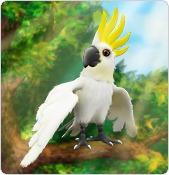 my-free-zoo-hirek-0.jpg