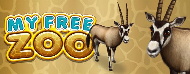 my-free-zoo-hirek-36.jpg