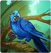 my-free-zoo-hirek-51.jpg
