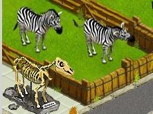 my-free-zoo-hirek-55.jpg
