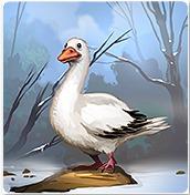 my-free-zoo-hirek-59.jpg