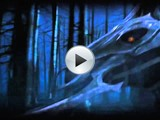 Lord of The Rings Online: Játékelőzetes