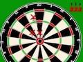 Pro 501 Darts